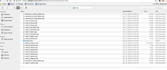 Screen Shot of SVG files for one project