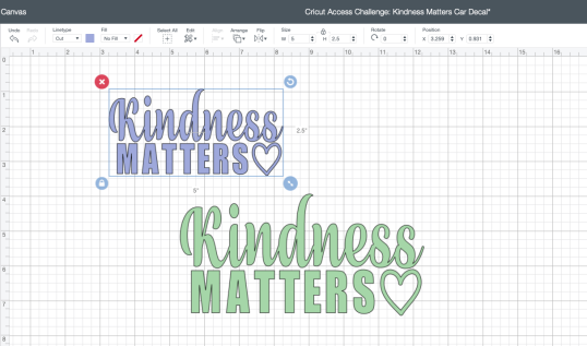 Kindness Matters DS project